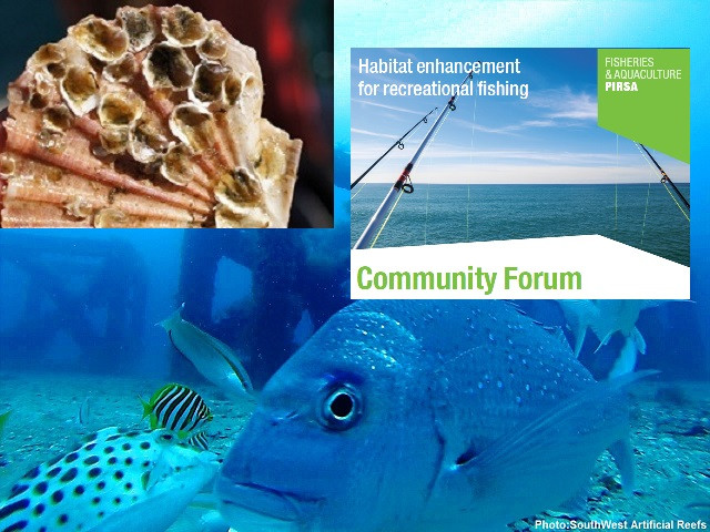 SA Artificial Reef Community Forum & Resource