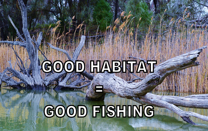 Register Now: Fishers for Fish Habitat Forum – September 10 Port Noarlunga